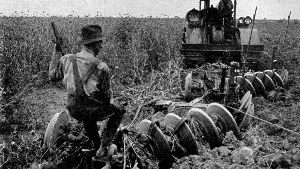 Sanayi Devrimi Tarımı Öldürdü mü?